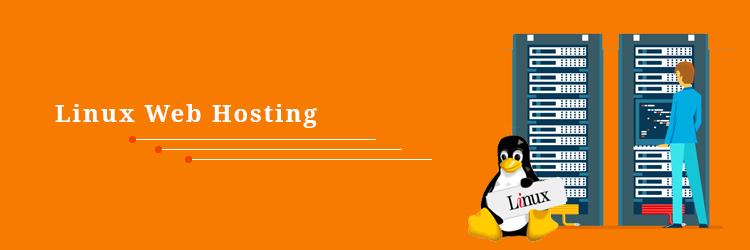Linux-Hosting-Lion-Vision